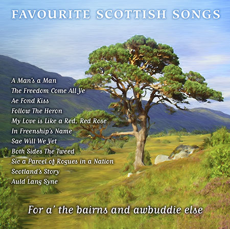 cover image for Favourite Scottish Songs (Celtic Collections vol 16)