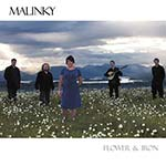 cover image for Malinky - Flower And Iron